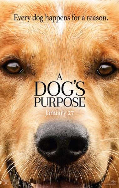 dogs_purpose